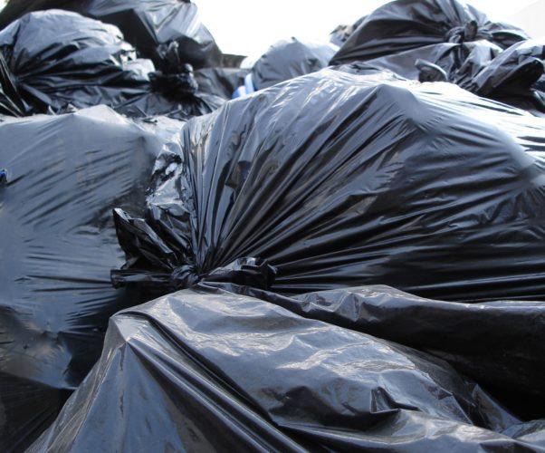 Il Sindaco e non il Dirigente dispone la rimozione dei rifiuti