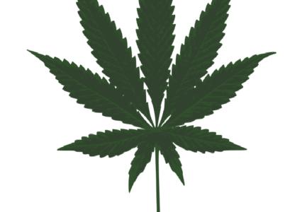 Direttiva del Ministero Interno sui Cannabis Shop