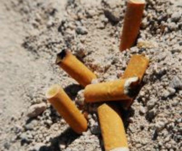 Destinazione delle sanzioni per abbandono di mozziconi di sigarette e scontrini